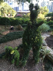 ローマストリートパークランドの園芸2