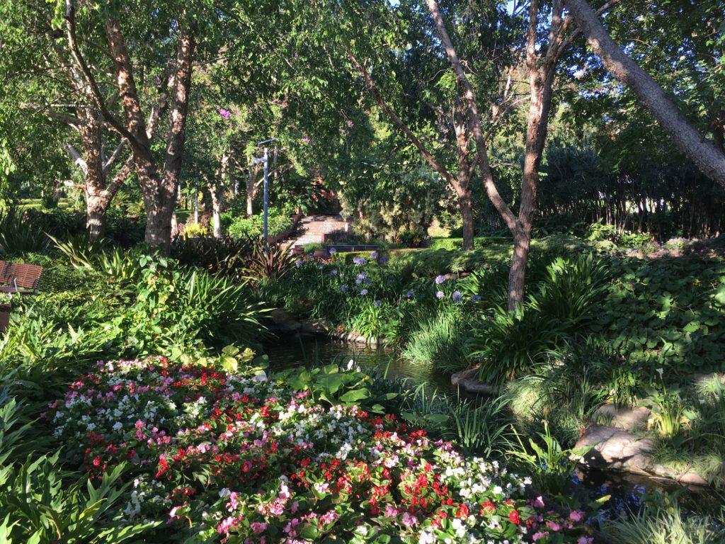 ローマストリートパークランドの園芸4