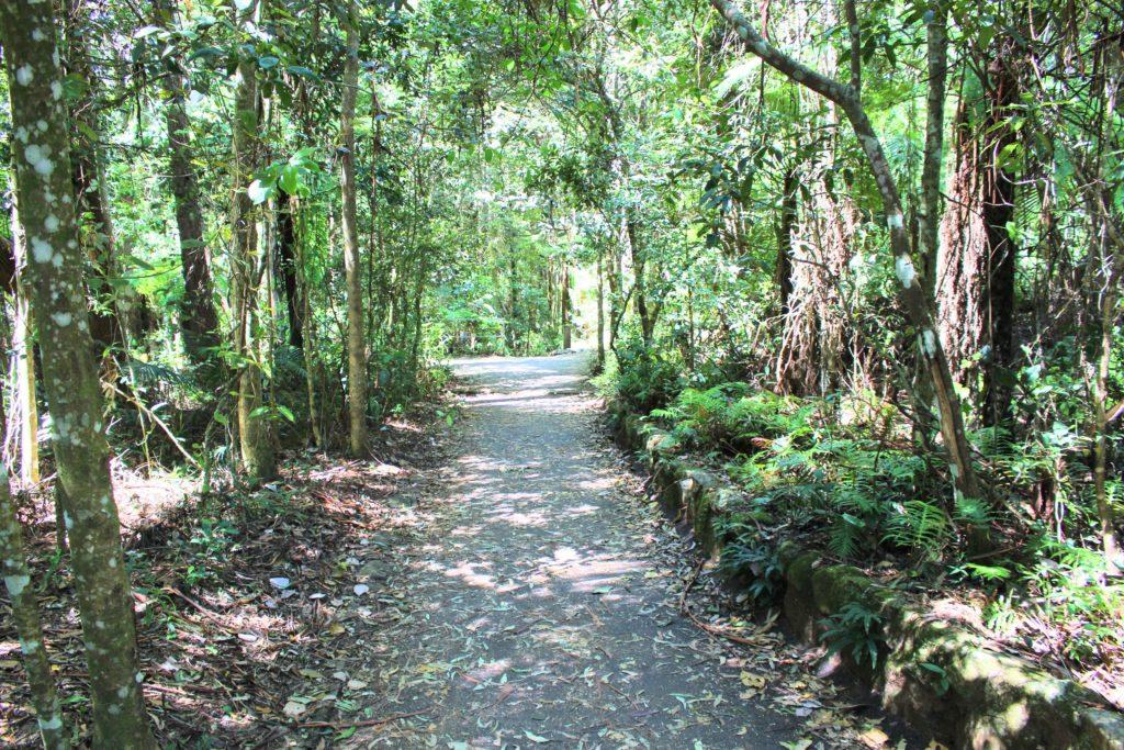 オーストラリアのスプリングブルック国立公園の魅力を徹底紹介します!!